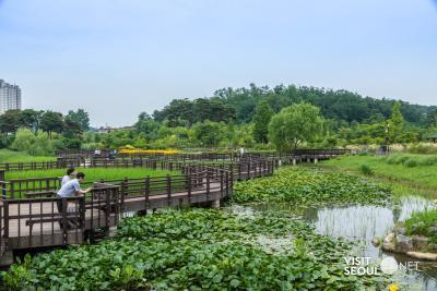 푸른수목원