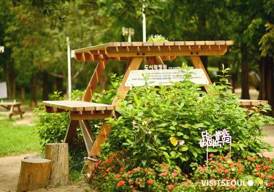 서울숲, 피크닉, 언택트, 야외, 공원, 피크닉, 모퉁이와플, 뚝섬역, 성동구 이미지 확대 보기