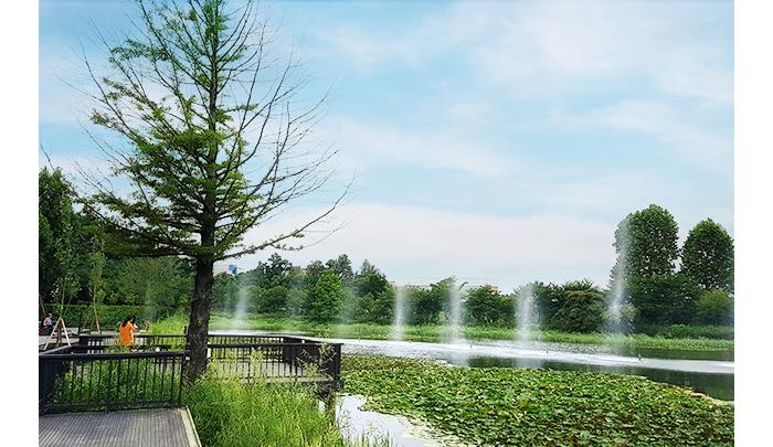 日常の中の小さな贅沢、ソウルヒーリングスポット_公園_西ソウル湖公園_1