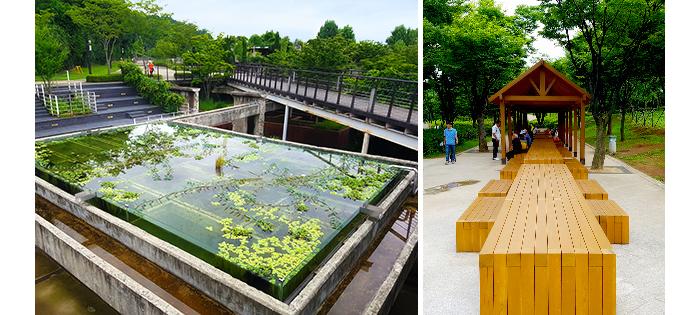 日常の中の小さな贅沢、ソウルヒーリングスポット_公園_西ソウル湖公園_2