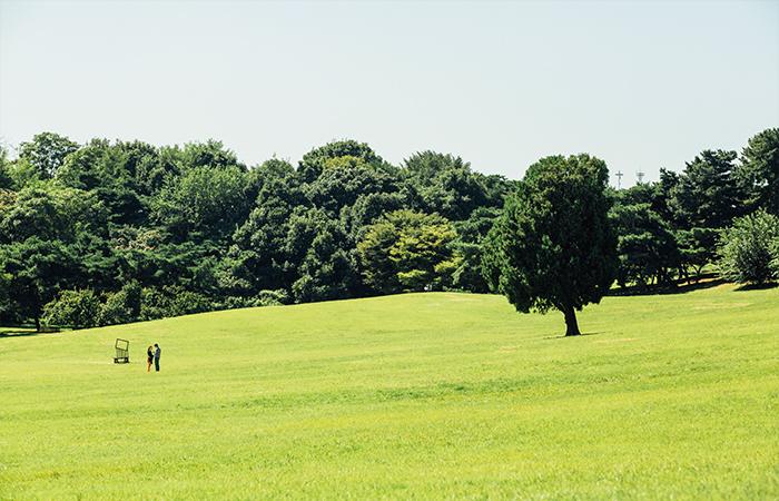 秋の四色_オリンピック公園