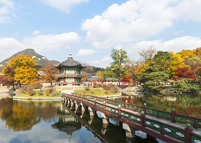 被枫叶染红的景福宫全景照片