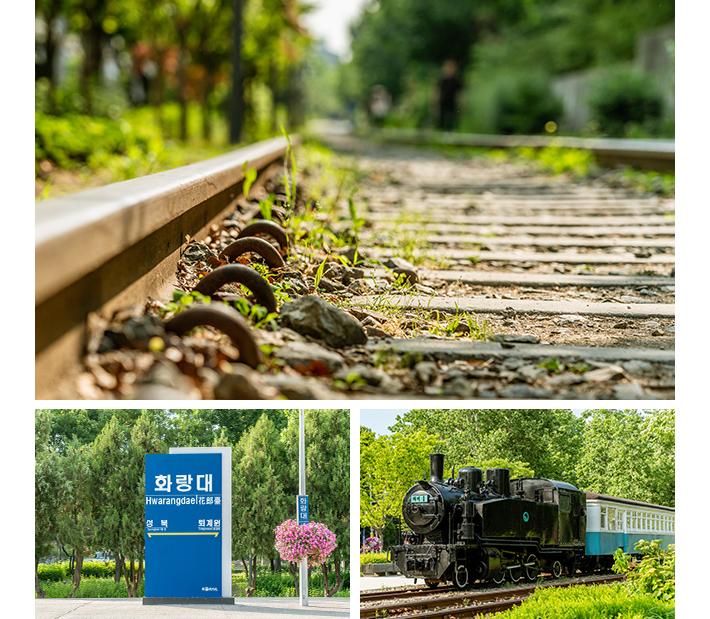 Gyeongchun Line Forest Trail02