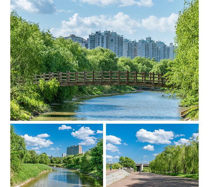 Saetgang Ecological Park02