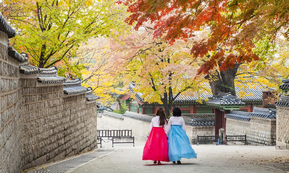 Две девушки в корейских традиционных нарядах ханбок гуляют вдоль каменной стены дворца Токсугун, окруженной кленовыми деревьями