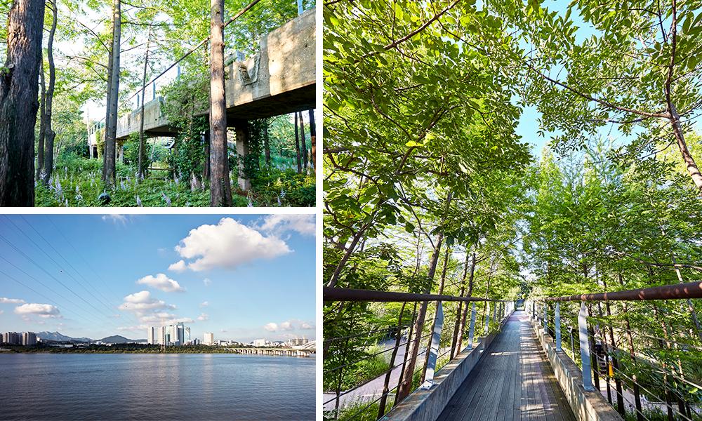ソニュド(仙遊島)公園とハンガン(漢江)を撮影した3種類の写真で構成