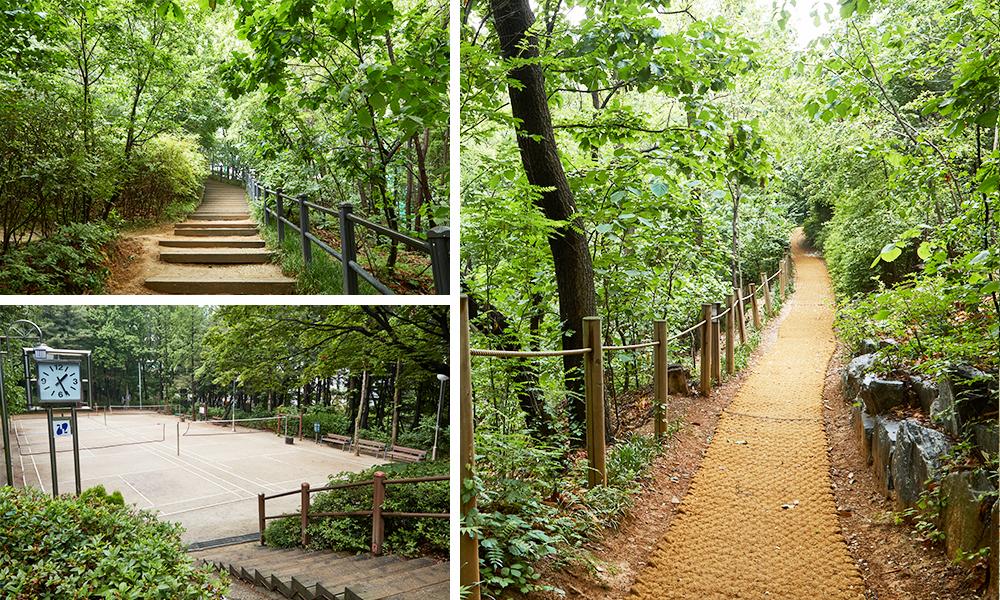 チョンダム(清潭)近隣公園の階段の道と散歩道を撮影した3種類の写真で構成