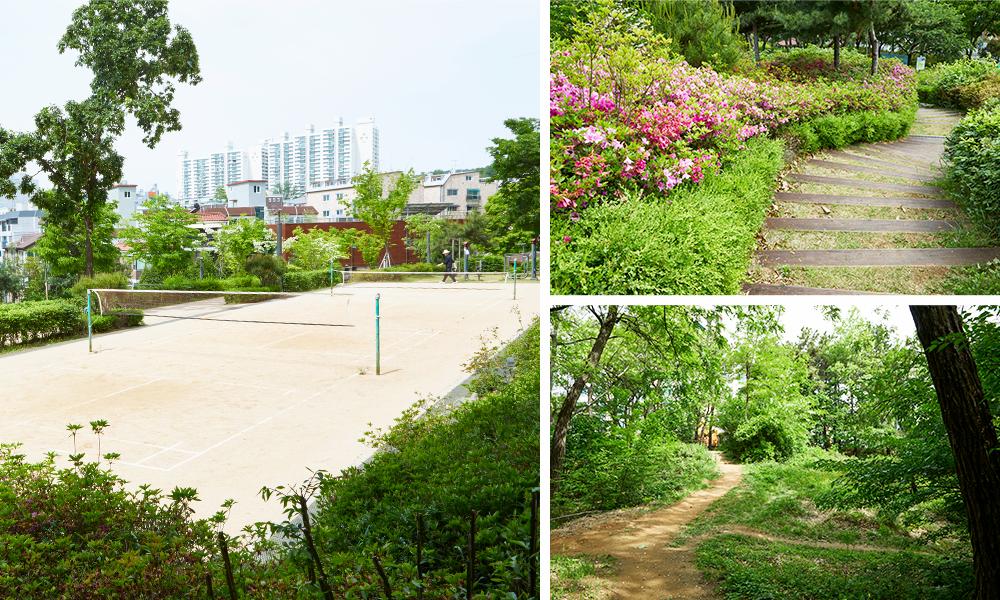 オンス(温水)都市自然公園の階段、道、運動場を撮影した3種類の写真で構成