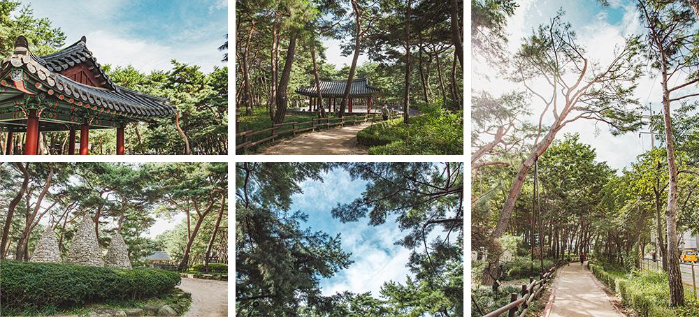 우이동 솔밭근린공원의 모습