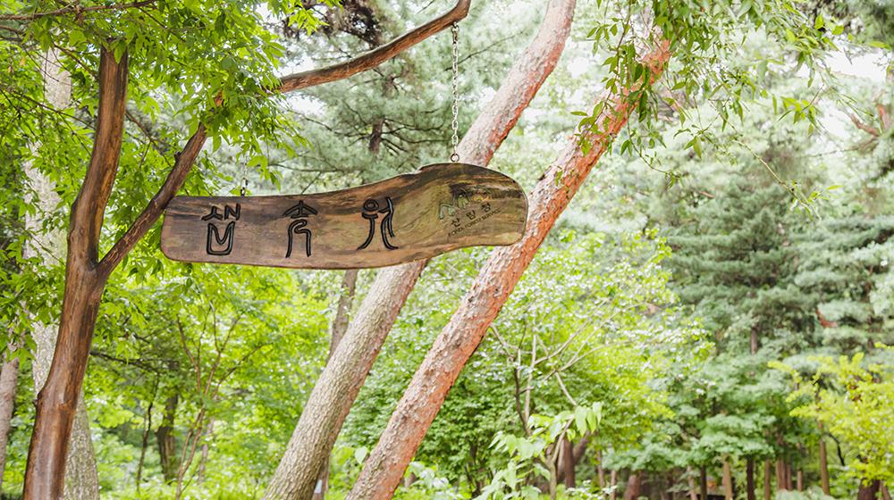 상월곡동 삼태기 숲의 모습
