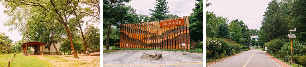 국립산림과학원 홍릉숲의 모습