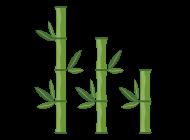 대나무 아이콘