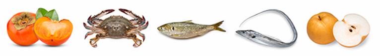 Persimmon, Cutlassfish, Gizzard Shad, Crab, Asian Pear
