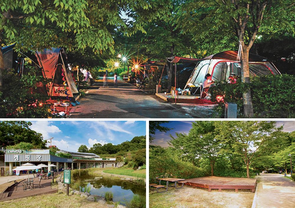 중랑캠핑숲에서 캠핑을 즐기는 사람들 사진과 중랑캠핑숲 전경, 빈 사이트 사진