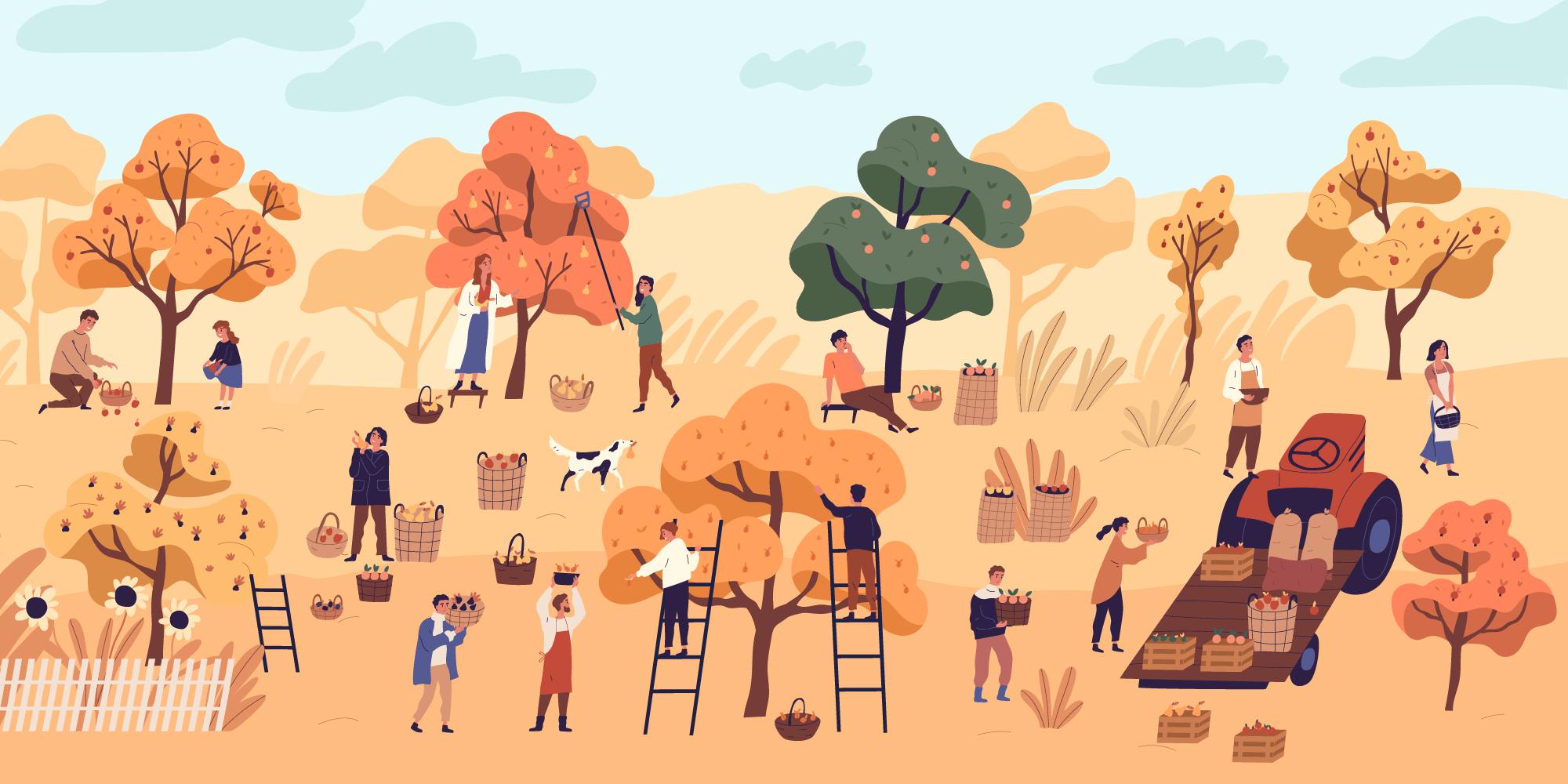 秋收風景插圖