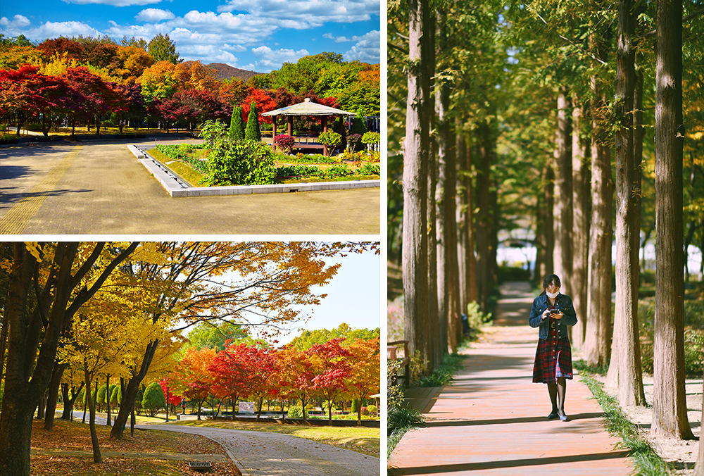 Three pictures showing the different walkways during the day with a pavilion at the center of one plaza, a winding path cutting through the park and a woman walking down a straight path coming toward the camera