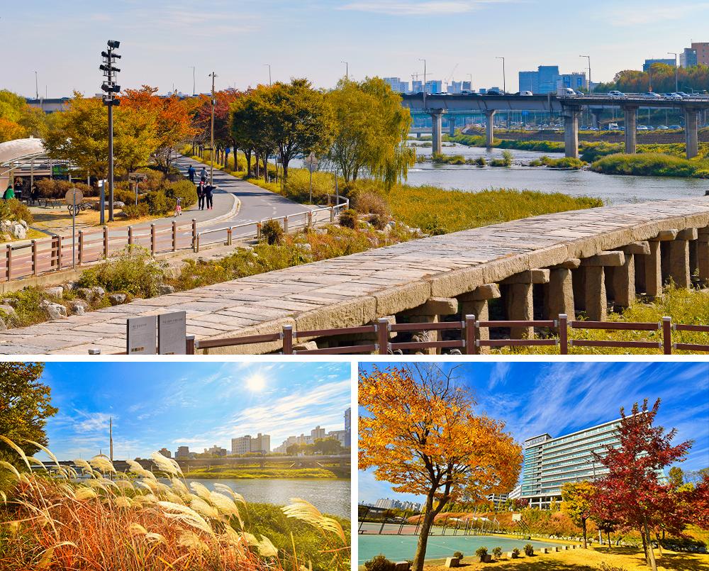 照片1:箭串橋秋天景色, 照片2:水邊紫芒草景色, 照片3: 漢陽大學景色