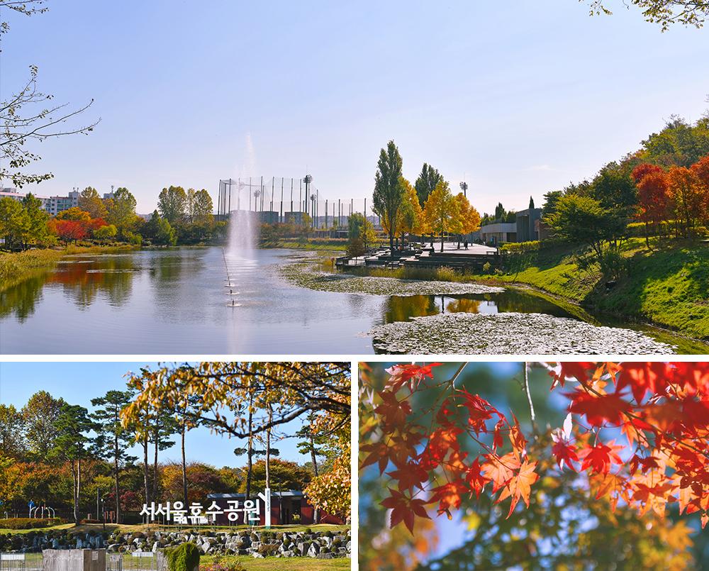 照片1:西首爾湖水公園噴泉照片, 照片2:西首爾湖水公園標誌, 照片3:西首爾湖水公園楓葉