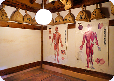 The interior of the museum with two diagrams of the human anatomy, front and back, showing muscle and tissue locations