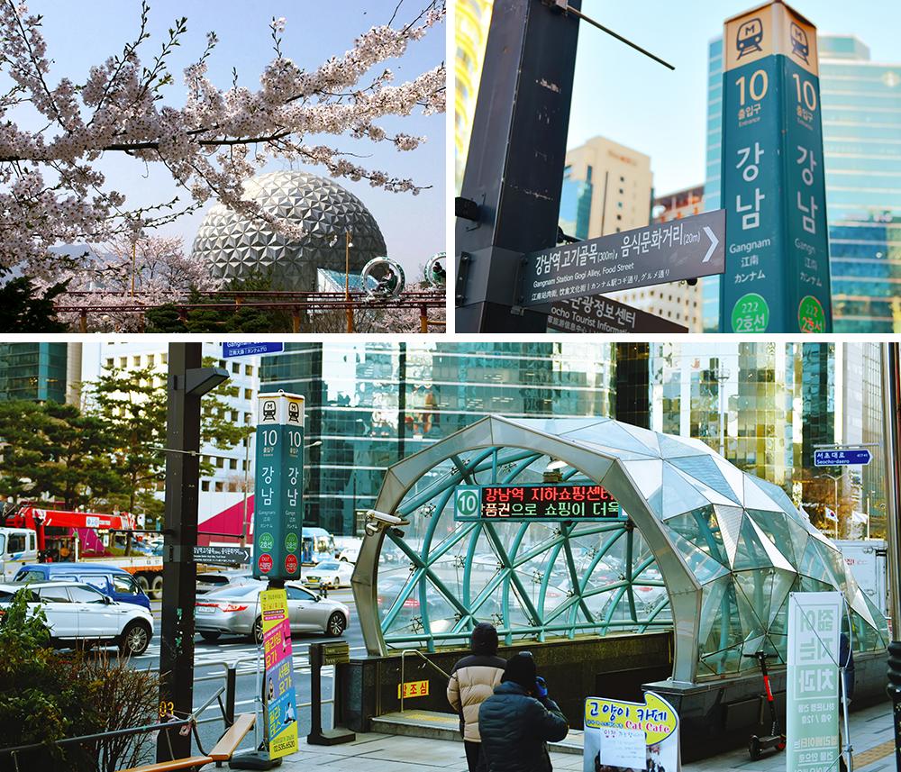 Коллаж из трех фото. На первом показана цветушая сакура в городе Квачхон. На втором фото показан столб на котором указан выход 10 Станции Каннам. На третьем фото показан выход номер 10 Станции Каннам