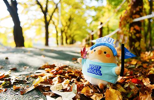 站在楓葉上的BAE-B玩偶照片