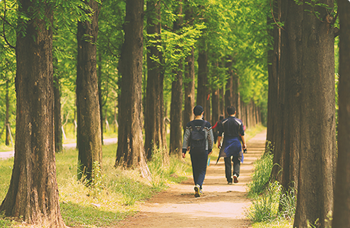 林道漫步照片