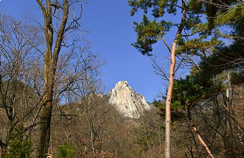숲에 가려 봉우리만 보이는 북한산