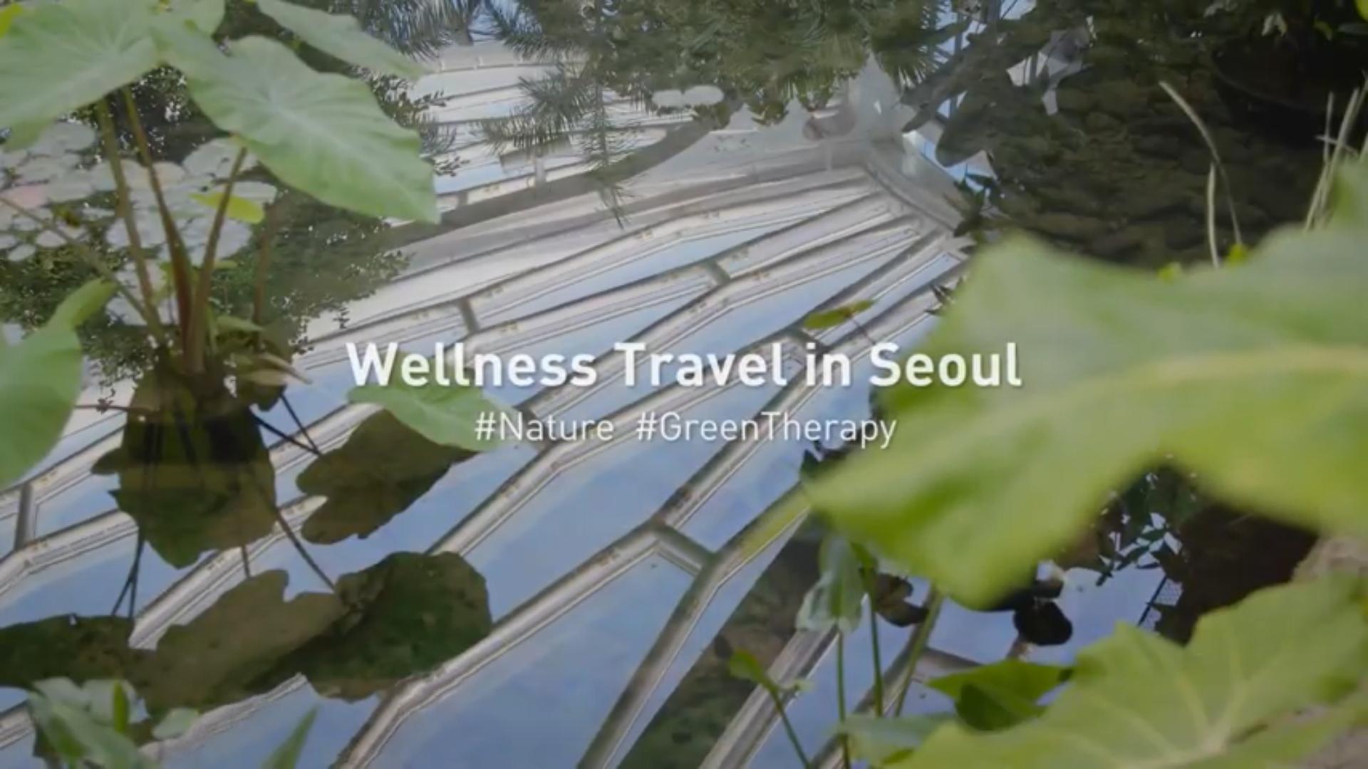 지친 일상에서 벗어나 서울의 자연 속으로 떠나는 힐링 여행