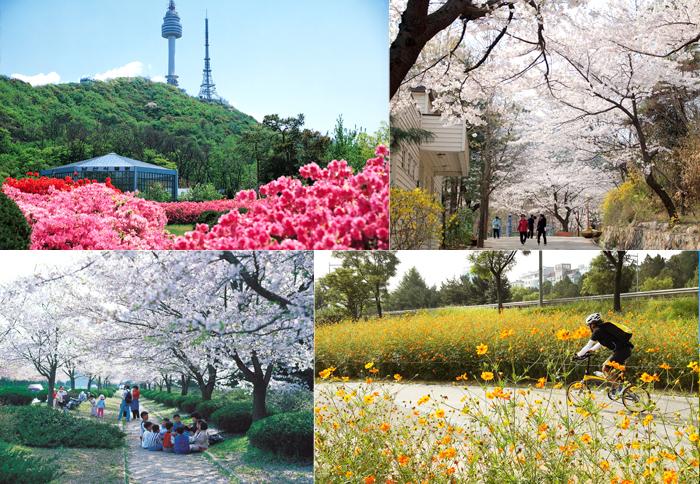 꽃길 따라 걷는 서울 나들이