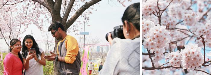 글로벌 서울 메이트
